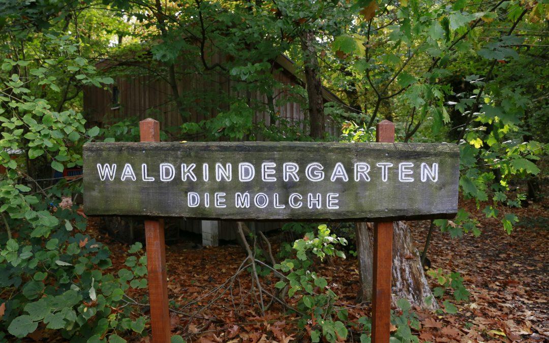 Infotag zur Aufnahme im Waldkindergarten